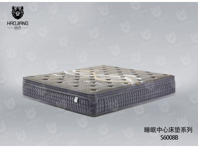 S6008B